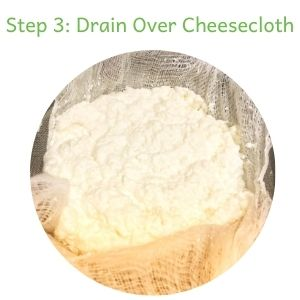 how to make paneer step 3: drain curdled milk over cheesecloth